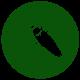 cocroach_icon