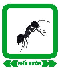 kien-vuon-gr