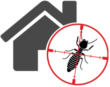 termite-control-icon