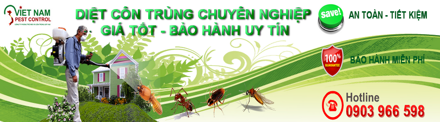 vn banner