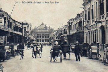 Pháp đã thất bại trong chiến dịch diệt chuột ở Hà Nội đầu thế kỷ 20