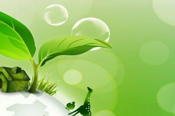 Thuốc diệt côn trùng làm từ nguyên liệu tự nhiên