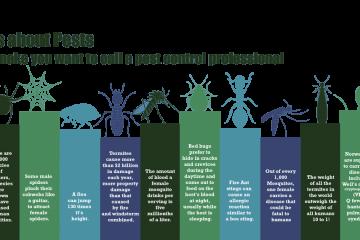 Diệt côn trùng cho hộ dân ở TPHCM