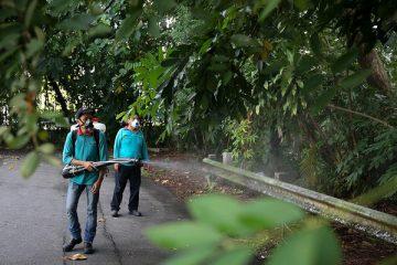 Chiến dịch diệt muỗi hiệu quả của Singapore