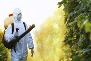 Công ty diệt côn trùng tại bình dương