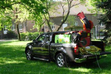 Dịch vụ diệt mối và diệt côn trùng tại tphcm